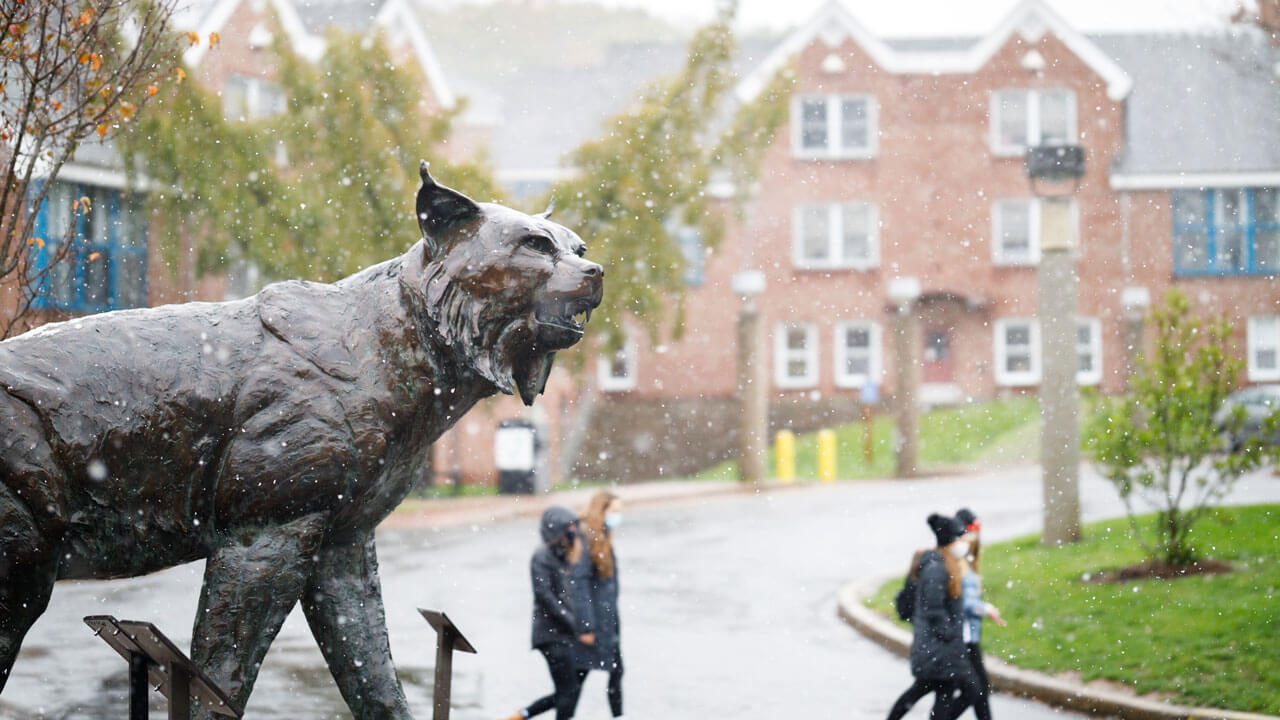 Students wearing face coverings on a snowy day walk behind the bobcat statue