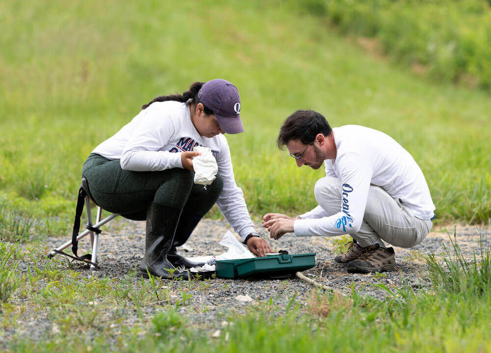 Two students perform research procedures in a field