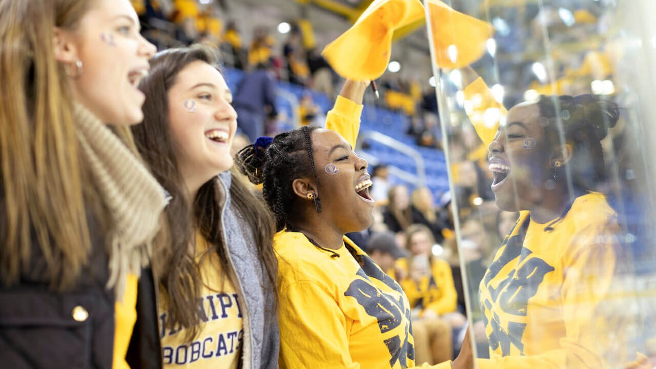 Students wearing Quinnipiac gold cheer on the division I hockey team