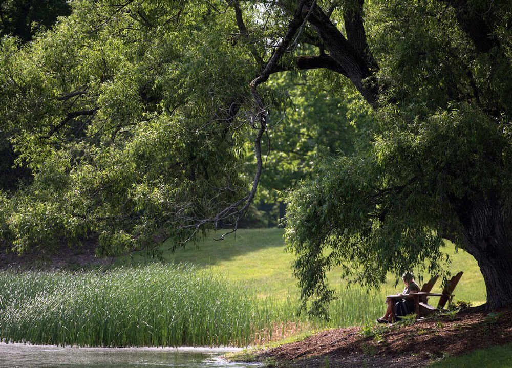 A students studies in an Adirondack chair by the pond